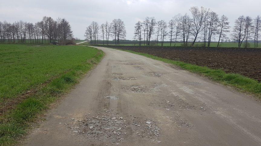 Droga gruntowa, po lewej stronie widać trawę, po prawej pole z czarną ziemią. Na horyzoncie widoczne drzewa bez liści.